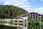 Отель Hotel Am Wolfgrubenersee