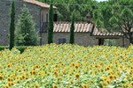 Holiday Home Due Olivi Cortona