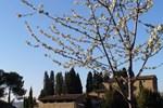 Апартаменты Apartment Borgo Farneta Volterra