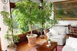 Апартаменты Holiday Home Giardini del Lago Luino