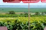 Гостевой дом Gasthof-Pension Wein