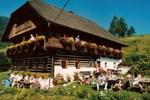 Отель Bauernhof Oberfriessnig