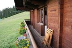 Holiday Home Bauernhaus Salvenalm Hopfgarten