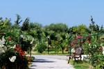 Отель Evripides Village Hotel