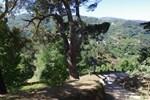 Гостевой дом Quinta do Ervedal