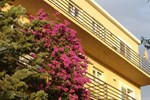 Гостевой дом Rooms & Apartments Dora