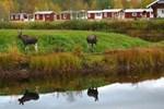 Отель Klarälven Camping