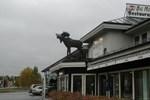 Big Moose Hotel