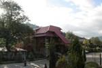 Гостиница Карпатский Эдельвейс