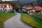 Отель Tourist Farm Hudičevec