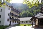 Гостевой дом Pensiunea Sibiel