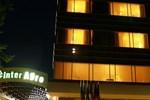 Отель Hotel Inter Zimnicea