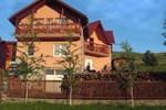 Мини-отель Pensiunea Moldovan
