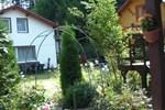 Гостевой дом Pensiunea Balea