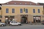 Отель Hotel Leul de Aur