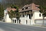 Отель Pensiunea Buzdugan
