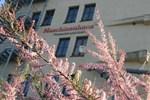 Отель Hotel Maschinenhaus