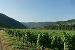 Апартаменты Holiday Home Kastanienhof Weingut Esseln Kesten