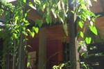 Хостел Yaxkin Hostel-Palenque