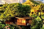 Отель The Tree House Resort