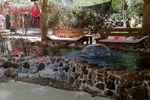 Хостел Desert Ashram