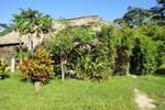 Отель Ecolodge Kayon - Selva Lacandona