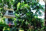 Отель Hotel Coco Plaza