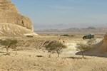 "Апартаменты Desert Routes Inn ""Shvilim Bamidbar"""