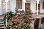 Мини-отель Эмир