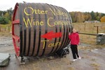 Отель Cozy Cottages and Otter Valley Winery