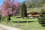 Отель Chalet Alpino - Maso del Brenta