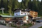 Отель Hotel Selva
