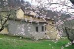 Отель Agriturismo Il Ponticello