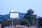 Отель Okayama International Hotel