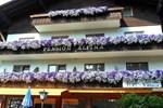 Гостевой дом Gasthof Pension Alpina