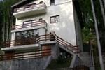 Гостевой дом Pensiunea Anotimpuri