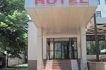 Отель Hotel Vaslui