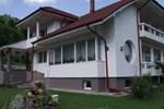 Гостевой дом Vila Ceahlau