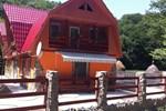 Гостевой дом Pensiunea Doi Cocosi