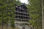 Отель Hotel Bradul