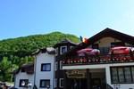 Гостевой дом Portile Ocnei