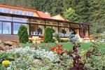 Отель Hotel Lacu Rosu