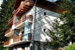 Гостевой дом Pension Casa Soarelui