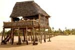 Отель Kipungani Explorer