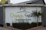 Organic Square Guesthouse