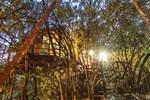 Гостевой дом Teniqua Treetops