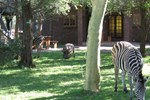 Отель Phumula Kruger Lodge and Safaris