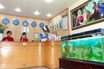 Отель Bao Anh Hotel