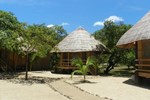 Отель Cashew Grove Beach Resort