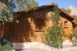 Отель Noor Majan Camp